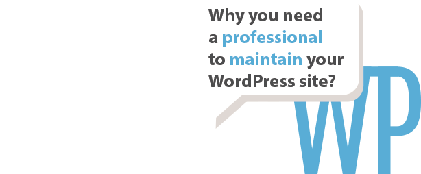 Professional WordPress maintenance