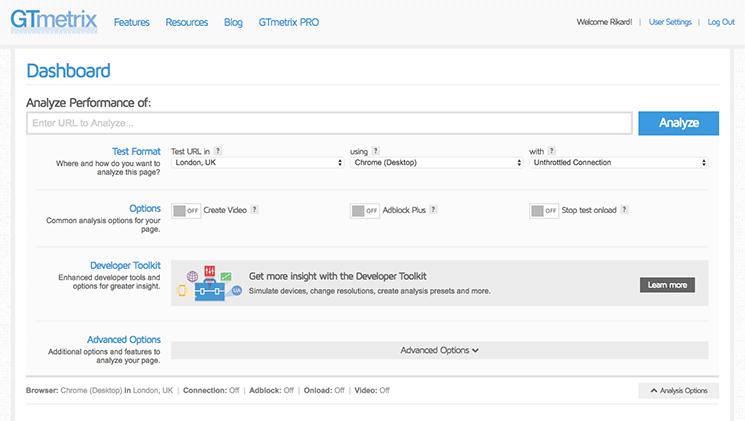 Advanced options GTmetrix testing tool